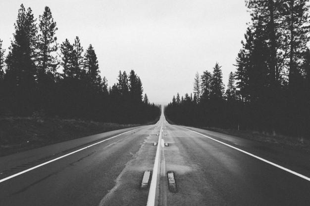 strada-in-bianco-e-nero-di-foreste_442-19321742