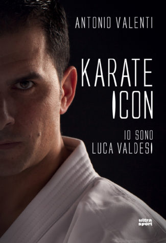 COVER karate icon h